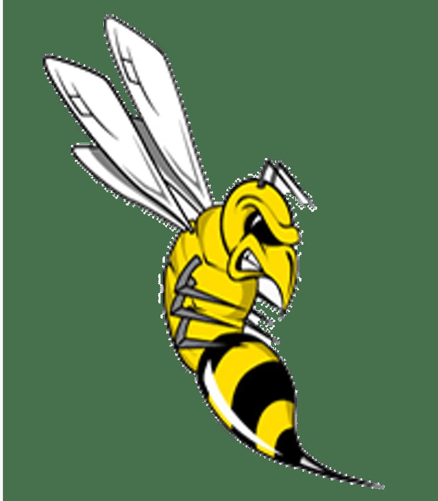 Tatnall Hornets