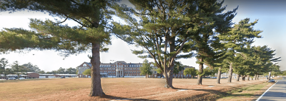 a large tree in a park