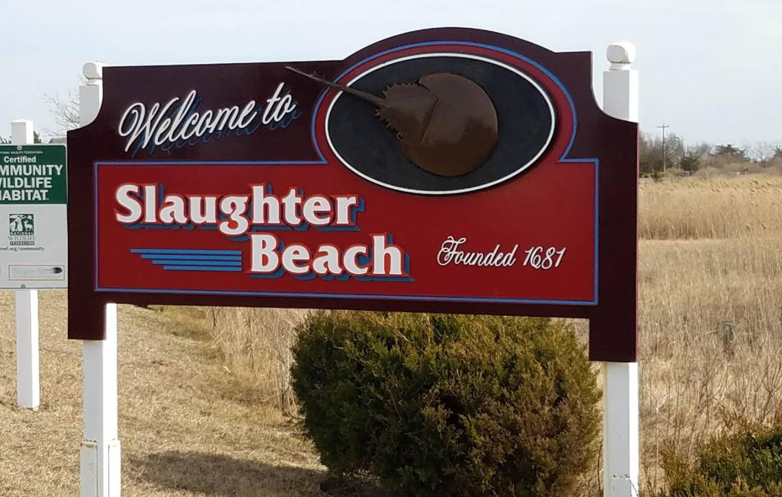 """Featured image for """"Slaughter Beach mayor asks Dems to rethink moving town to new Senate district"""""""